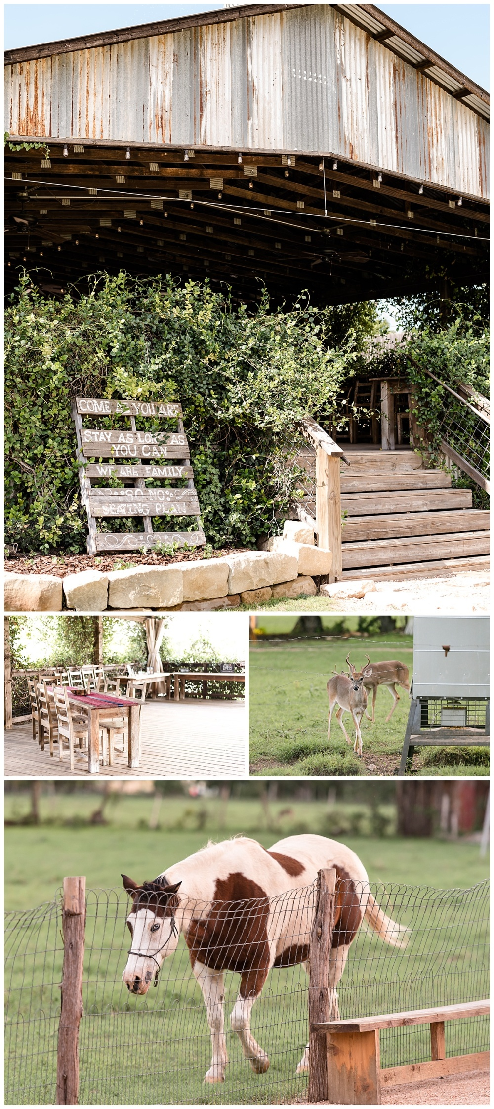 Texas-Wedding-Photographer-Gruene-Estate-Open-Air-Chapel-Carly-Barton-Photography-Katie-Nic_0005.jpg